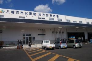 八幡浜市水産物地方卸市場