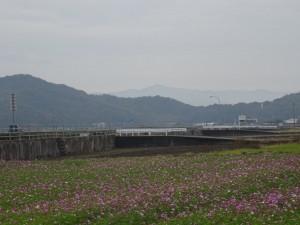 阿南市の風景1