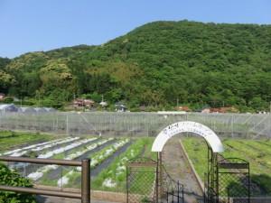 美祢市風景1道の駅